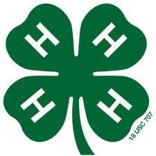 4-H clover2