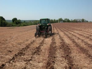deep zone tillage
