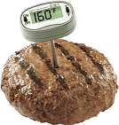 hamburger-and-thermometer