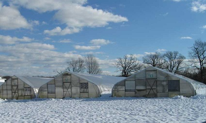 Reducing Storm Damage to Your Greenhouses | Extension