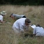 Master Gardeners Assist Grassland Study