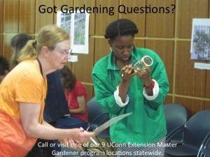 garden questions
