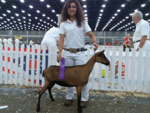 Mia Herrera and goat at show in Kentucky