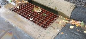 stormwater running into a street drain