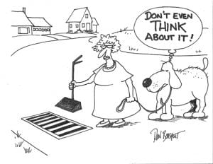 cartoon of lady and dog scooping poop and not placing it in stormwater drain