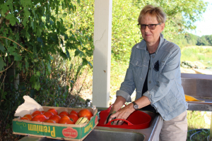 Diane Hirsch working with produce prior to a UConn Extension food safety training. Photo: Cameron Faustian