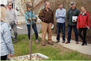 a group works with Amanda Ryan from UConn Extension on municipal stormwater regulations or MS4