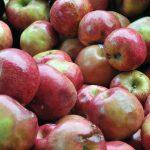CT Seeks Better Information & Understanding of Produce Growers