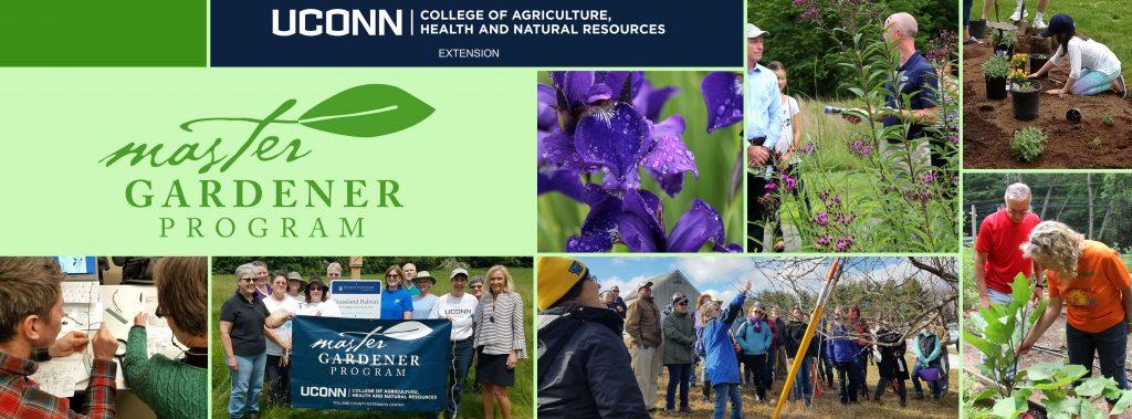 Master Gardener banner photo