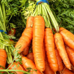 Pre-Register for Vegetable and Small Fruit Growers' Conference