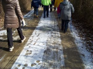 people walking on a shaded, snowy trail in the winter