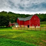 Mental Health & Farm Stress
