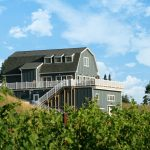 Real Farmers, Real Risks: Interview with Preston Ridge Vineyards