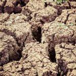 Spotlight – Soil Degradation