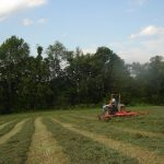 Man and his tractor on the field