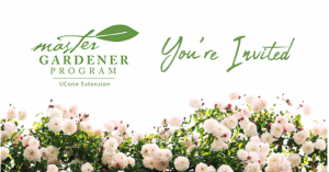 Garden party invite graphic with logo