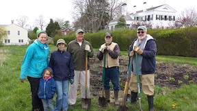 group that planted living shoreline in stonington