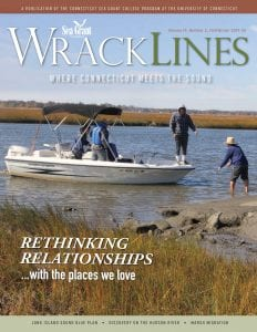 Wrack Lines cover