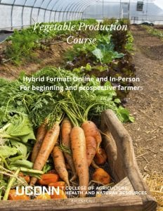 vegetable production flyer