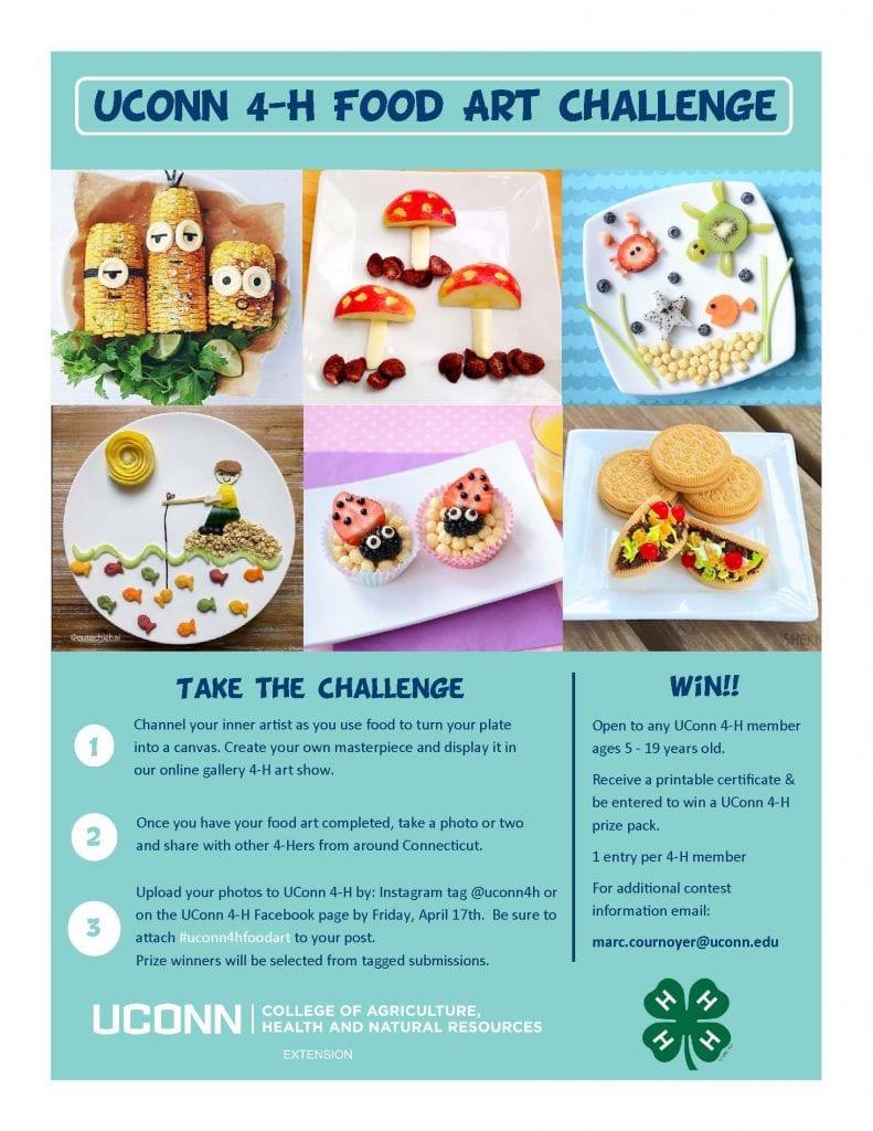 UConn 4-H Food Art Challenge logistics