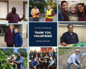 collage of photos with UConn Extension volunteers smiling at the camera that says thank you in the middle