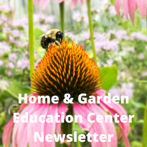 bee on a pink flower with the words home and garden education center newsletter written on it