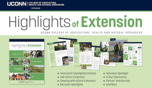Highlights of Extension spread of images and articles