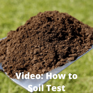 shovel with soil on it with text that says video: how to soil test