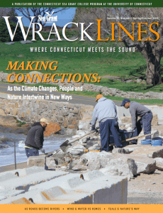 Wrack Lines Spring-Summer 2019 cover