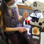 Emily Van Gulick prepares a sample for examination under the microscope.